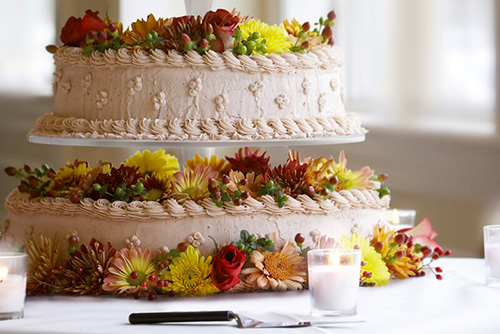 Alzata torta